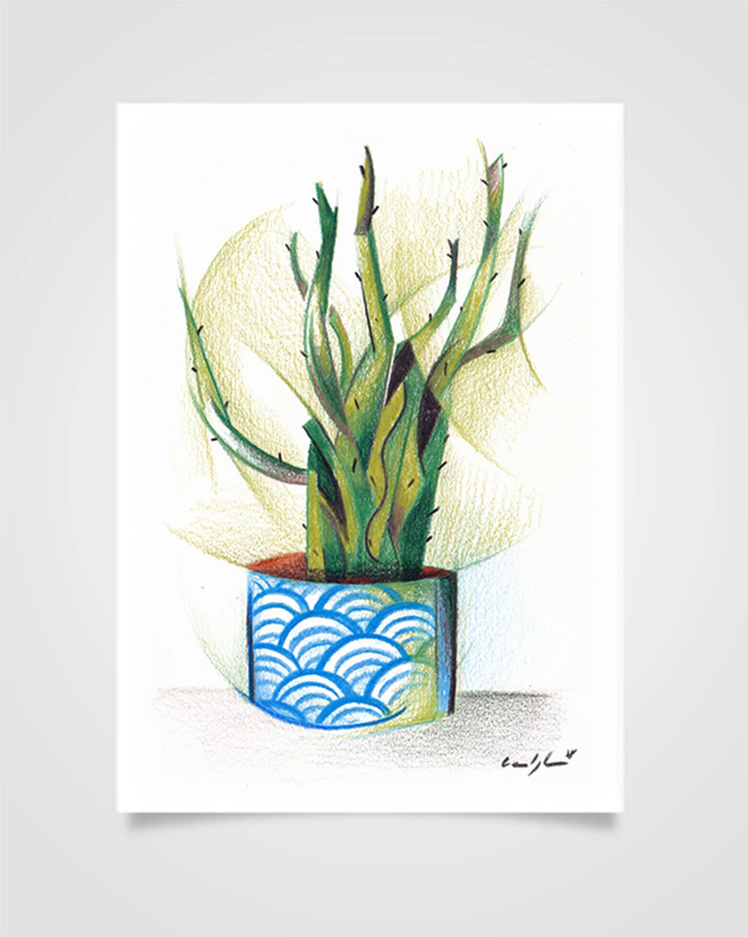 """""""Flora - Cactus"""" Pastelli su carta, 14,8 x 21cm"""